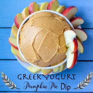 Greek Yogurt Pumpin Pie Dip Recipe