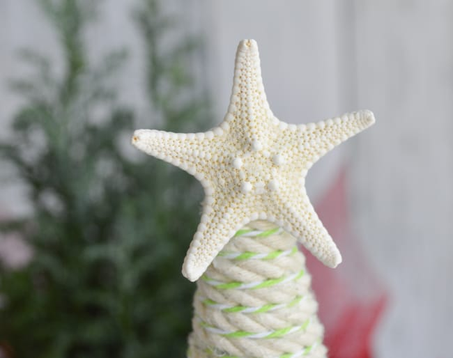 starfish topper