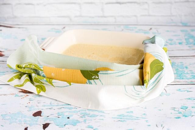 "homemade orange gelatin "" Jello"" squares"