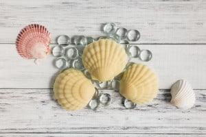 Nourishing Lotion Bar Recipe/Tutorial (beeswax free!)