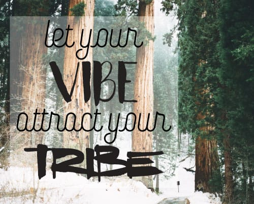 Let your vibe attract attract your tribe printable