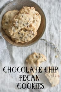 Chocolate Chip Pecan Cookies Recipe