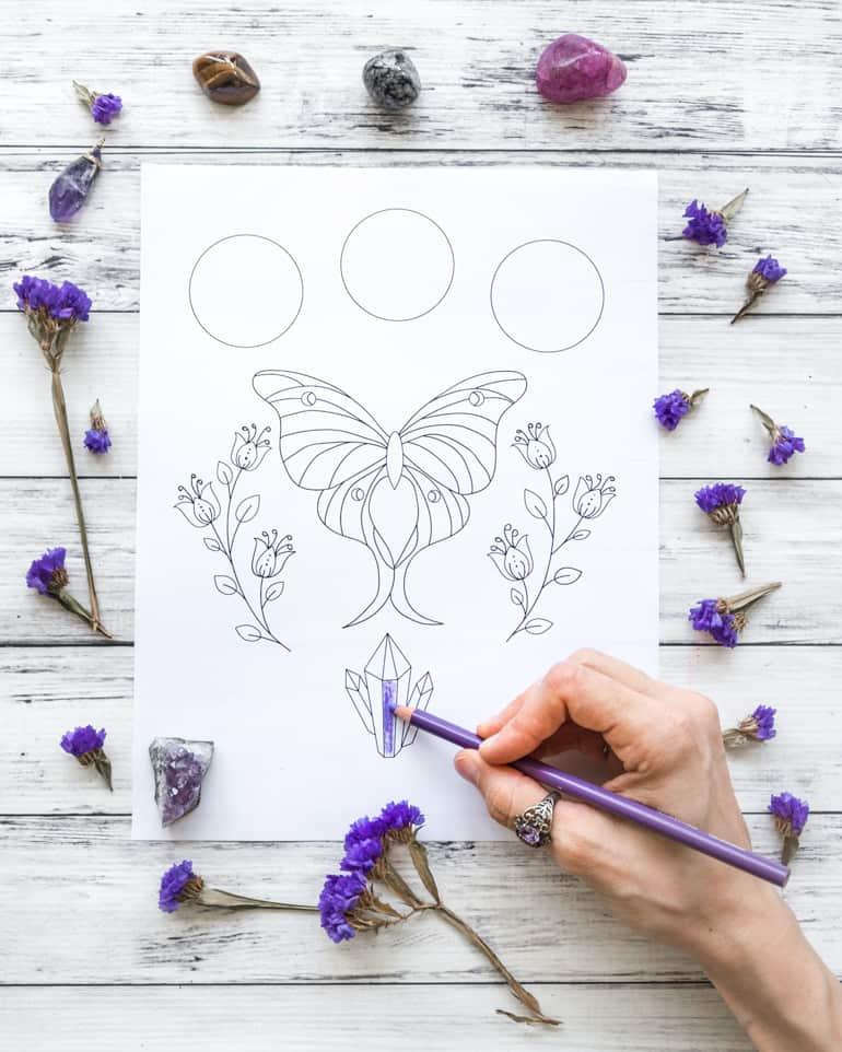 free printable luna moth coloring page